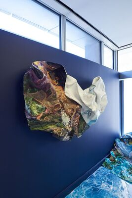 Fellow Focus: Camille Hoffman, installation view