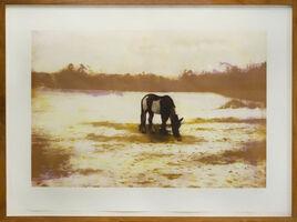 Peter Doig, 'Pinto', 2000