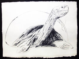 Andy Warhol, 'Vanishing Animals - Galapagos Tortoise', 1986
