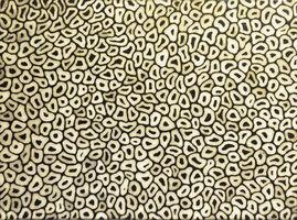 Yayoi Kusama, 'Infinity Nets TWXA ( #03812)', 2003