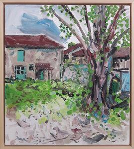 Neil Haas, 'Lime Tree', 2018