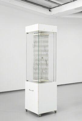 Neutralino, installation view
