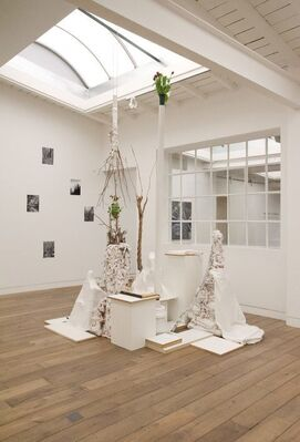 HARTMUT NEUMANN - Overgrown and Disappeared, installation view