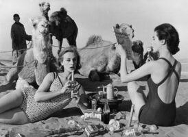 William Klein, 'Tatiana + Marie Rose + Camels, Morocco (Vogue)', 1958