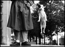 Elliott Erwitt, 'Paris, FRANCE.', 1989