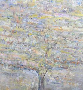 Eric Olsen, 'Summer Tree', 2019