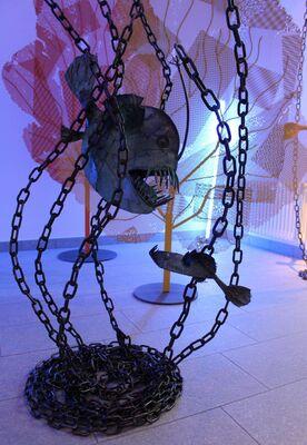 UNDERWATER   Mario Branca, installation view