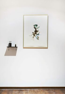 Soil as witness | Memory as wound, installation view
