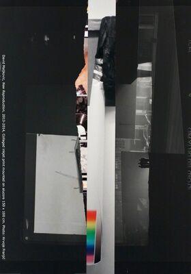 Dans un monde Magnifique et Furieux, Group show, installation view