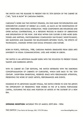 Cabinet de l'Art |Carolina Pimenta, installation view
