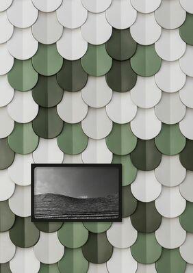 APPLIED ARTS. NOW: Patrycja Domanska. STIMULI, installation view