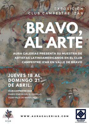 Bravo, al Arte, installation view