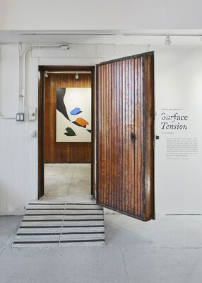 Surface Tension, installation view