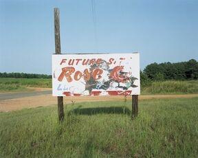 Sign Near Greensboro, Alabama (Future Rose)