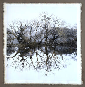 Bill Claps, 'Tree Silhouette West Lake I', 2019