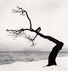Michael Kenna, 'Kussharo Lake Tree, Study 15, Kotan, Hokkaido', 2009