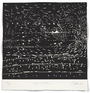 Catherine Farish, 'Night Scribbles 1', 2009