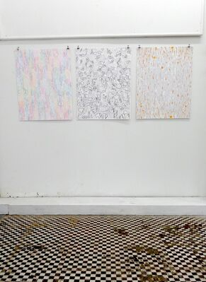 Meredith Starr: Forces of Nature, installation view