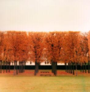 Lynn Geesaman, 'Parc de Sceaux, France (10-08-39c-3)', 2008