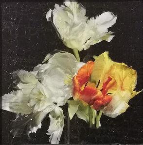 Alexander James Hamilton, 'Untitled 7', 2021