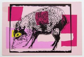 Andy Warhol, 'Vanishing Animals - Giant Chaco Peccary', 1986