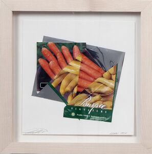 Sam Van Aken, 'Carrot/Squash', 2011