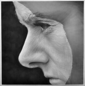 Melissa Cooke, 'Crested', 2012