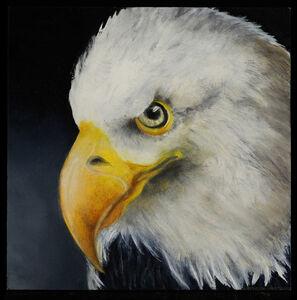 Adrienne Sherman, 'Saved  (American Bald Eagle)', 2020
