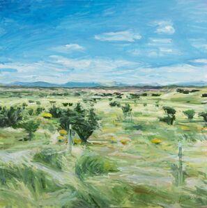 Fran Lightman Gibson, 'The Road Just Taken'