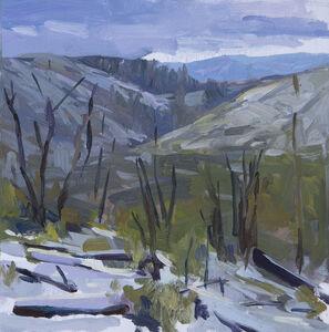 Joe Forkan, 'Old Burn, San Gabriel Mountain', 2016