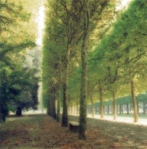 Lynn Geesaman, 'Parc de Sceaux, France', 1997
