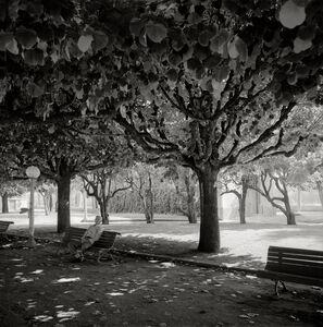 Garie Waltzer, 'Park Coimbra', 2005