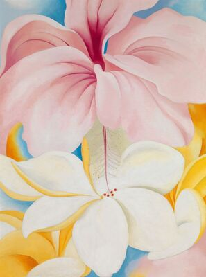 Georgia O'Keeffe: Visions of Hawai'i, installation view