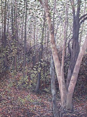 Vicki Kocher Paret - Among Trees, installation view