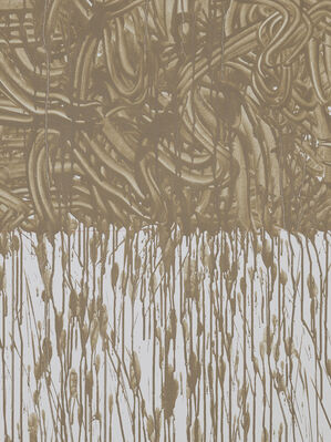 Richard Long: FROM A ROLLING STONE TO NOW, installation view
