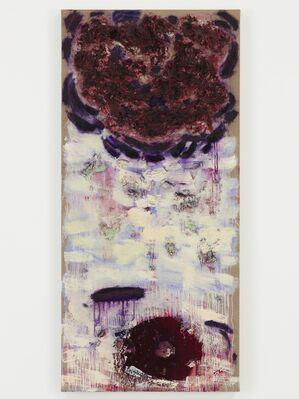 Joan Snyder: Rosebuds & Rivers, installation view