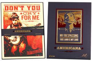 Shepard Fairey, 'Americana Box Set', 2012