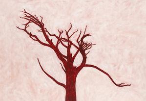 Tree No. 21 (PC188)