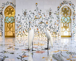 Morning Glory, Grand Mosque, Abu Dhabi