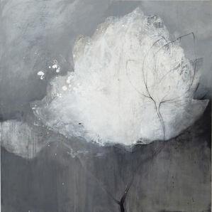 Fleur blanche fond gris