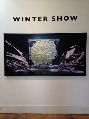 Winter Show, installation view