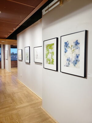 Over, Under, and Inside by Ryuijie, installation view