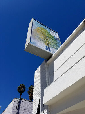 NICOLAS BAGHIR VISIONS III, installation view