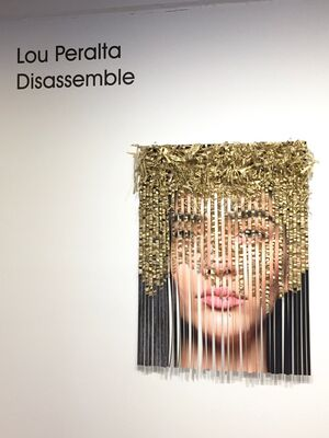 Disassemble, installation view
