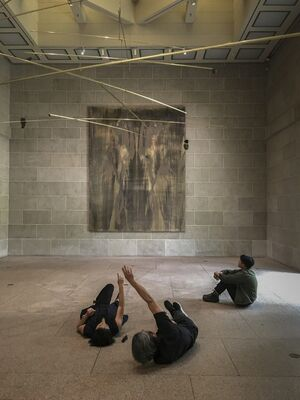 Perspectives: Michael Joo, installation view