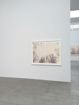 From the Sky, installation view