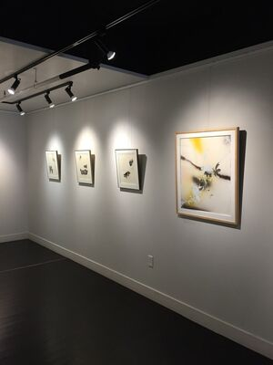 Remember Every Bird, installation view