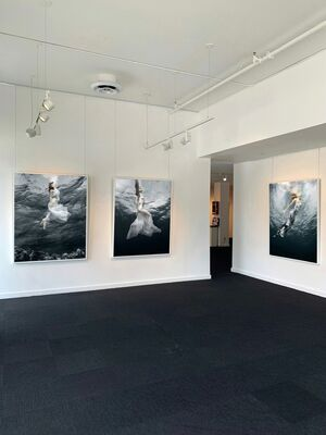 SURFACING by Barbara Cole, installation view