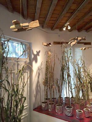 'Astronauta maya haciendo malabares con meteoritos' by James Bonachea, installation view