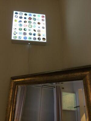 Life Patterns, installation view